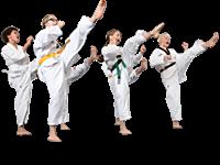 Taapero - ja Tiikeri Taekwondon natsakokeet LA 28.5.!