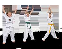 Tiikeri-Taekwondo