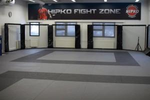 sali fight zone 2