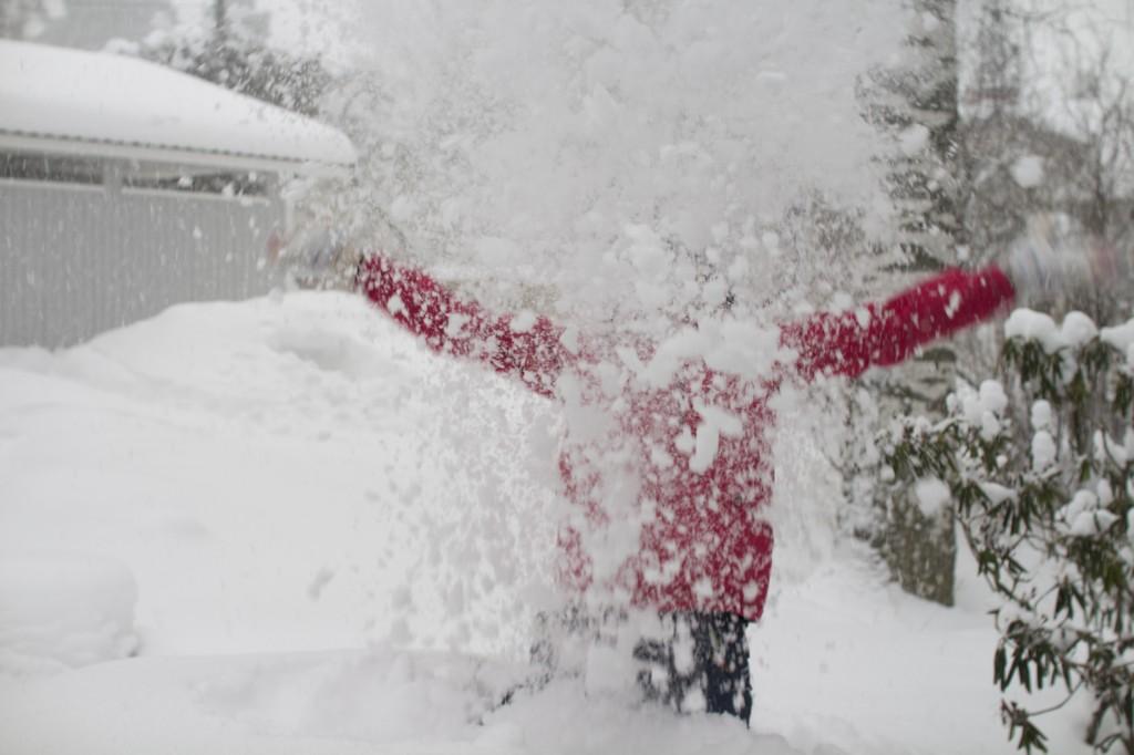 Hipkon talvikoma 17.-23.2.2014