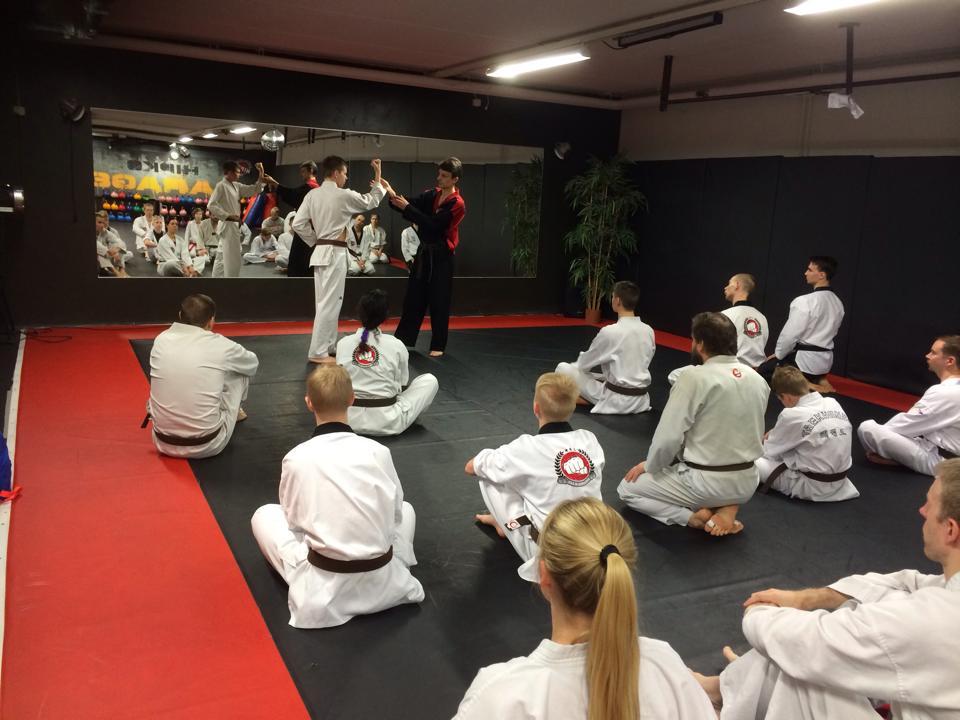 Taekwondon valkoinen - mustavyö -seminaarisarja ja harjoitusopas!