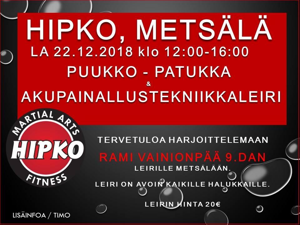 Seminaari - patukka, veitsi ja healing 22.12.2018