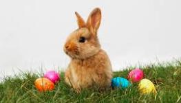 Salit suljettu Pääsiäisenä pe 2.4. - ma 5.4.