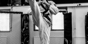 Seminaari 17.10: Mooye Taekwondon ruskeiden- ja mustien vöiden leiri