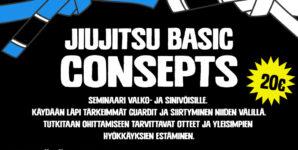 BJJ Basic Concepts